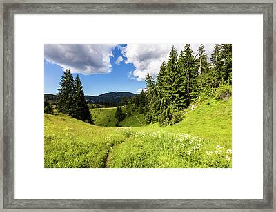Green Mountain Framed Print by Evgeni Dinev