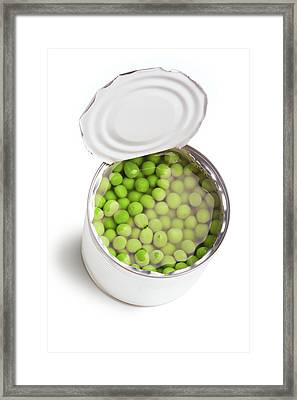 Green Peas In The Can  Framed Print by Vadim Goodwill