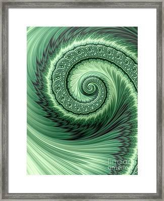 Green Shell Framed Print by John Edwards