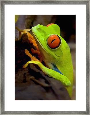 Green Tree Frog Framed Print by Sharon Foster