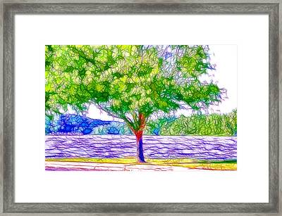 Green Trees By The Water  5 Framed Print by Lanjee Chee