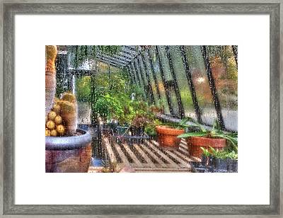 Greenhouse - In A Greenhouse Window  Framed Print by Mike Savad