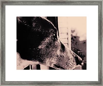 Grey Gatsby Framed Print by Susan Maxwell Schmidt