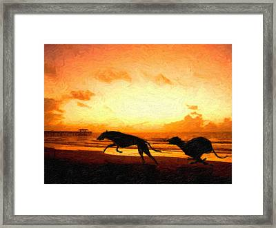 Greyhounds On Beach Framed Print by Michael Tompsett