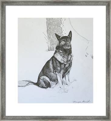 Grim The Gsd Framed Print by Meigan Parrish
