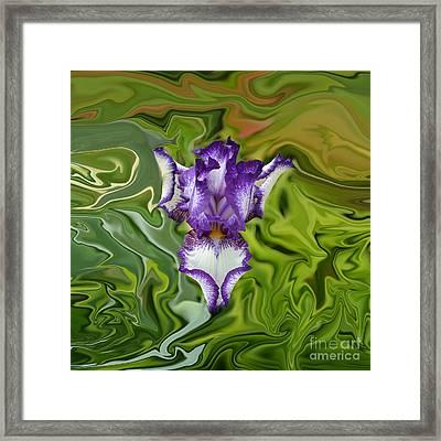 Groovy Purple Iris Framed Print by Rebecca Margraf