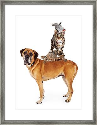 Grop Of Pets Stacked Up Framed Print by Susan Schmitz