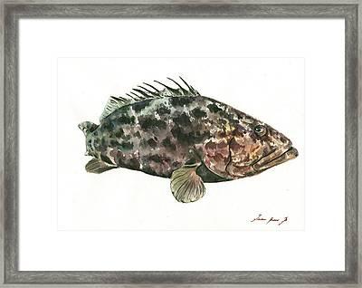 Grouper Fish Framed Print by Juan Bosco