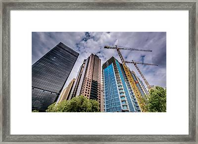 Growth Framed Print by Phil Fitzgerald