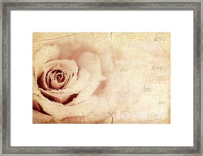 Grungy Rose Background Framed Print by Anna Om