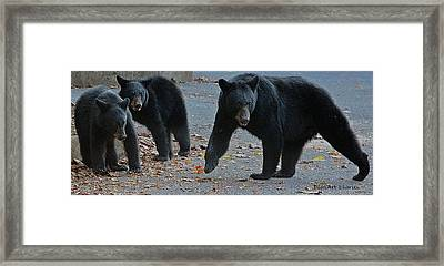 Guarding Her Cubs Framed Print by DigiArt Diaries by Vicky B Fuller