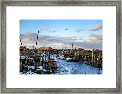 Framed Print featuring the photograph Gujan Mestras I by Thierry Bouriat