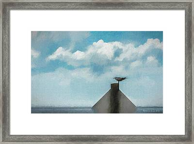 Gull And Sky Framed Print by Marvin Spates