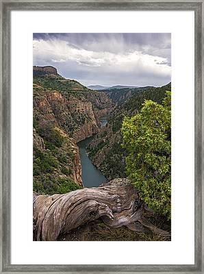 Gunnison River Colorado Framed Print by Loree Johnson