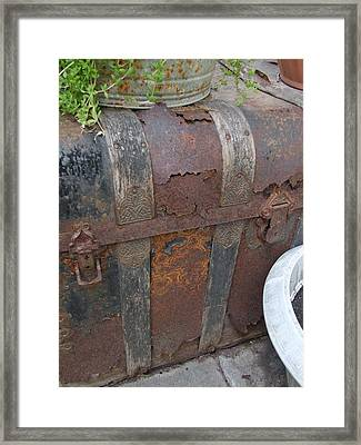 H Trunk Framed Print by Ali Dover