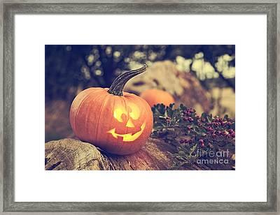 Halloween Pumpkin Framed Print by Amanda Elwell