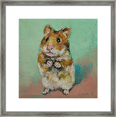 Hamster Framed Print by Michael Creese