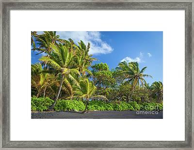 Hana Palm Tree Grove Framed Print by Inge Johnsson