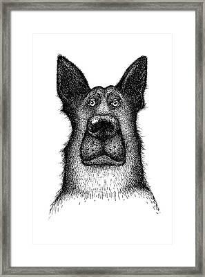 Hands Drawing A Portrait Of A Dog - Sheep Dog Framed Print by Anastasiia Kononenko