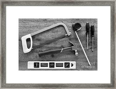 Handyman Framed Print by Olivier Le Queinec