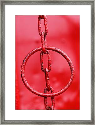 Hanging Around Framed Print by Paul Wear