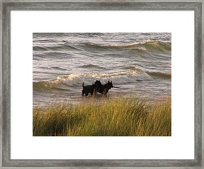 Happiness Is Playing In Lake Michigan  Framed Print by Jane Greiner