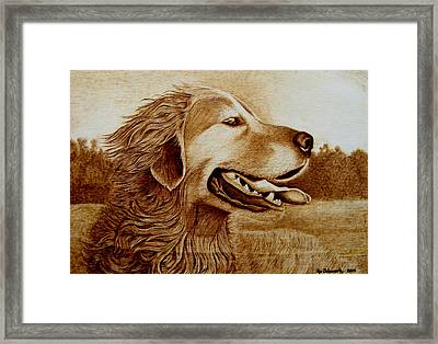 Happiness Framed Print by Jo Schwartz