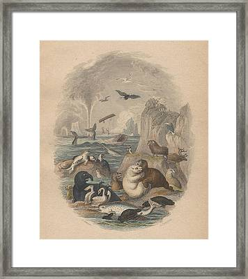 Harbor Framed Print by Oliver Goldsmith