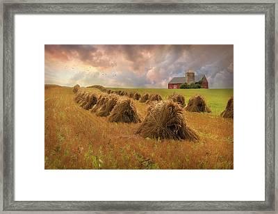 Harvest Blessings Framed Print by Lori Deiter