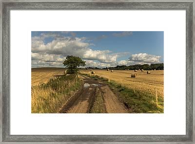 Harvest Time Framed Print by Chris Fletcher