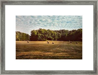 Harvest Time Framed Print by Jai Johnson