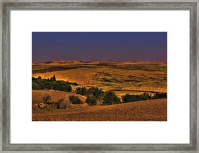 Harvested Fields Framed Print by David Patterson
