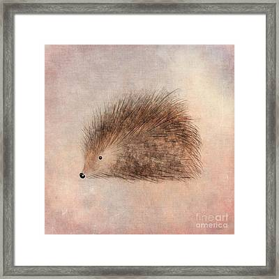 Hattie Hedgehog  Framed Print by John Edwards