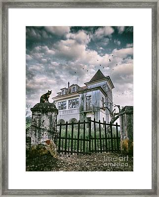 Haunted House And A Cat Framed Print by Carlos Caetano
