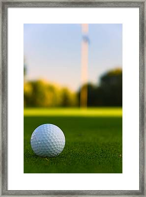 Have A Ball Framed Print by Edwin Voorhees