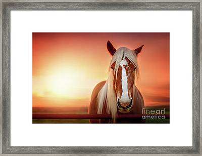 Have I Told You Lately That I Love You Framed Print by Tamyra Ayles