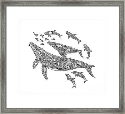 Hawaiian Humpbacks Framed Print by Carol Lynne