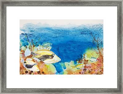 Hawaiian Triggerfish Framed Print by Tanya L Haynes - Printscapes