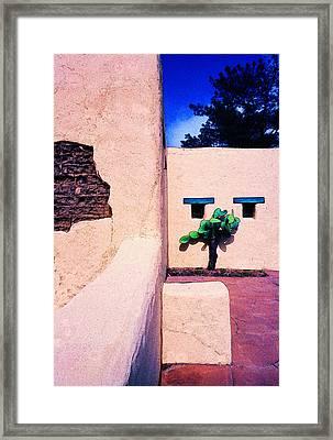 Hawk Eyes Framed Print by Paul Wear