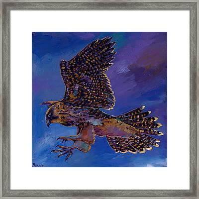 Hawk Flight Framed Print by Johnathan Harris