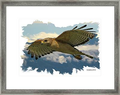 Hawk On The Wing Framed Print by Larry Linton