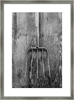 Hay Fork Framed Print by YoPedro