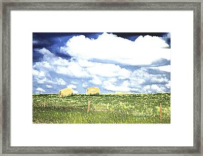 Hayfield Framed Print by Lenore Senior and Tracy F