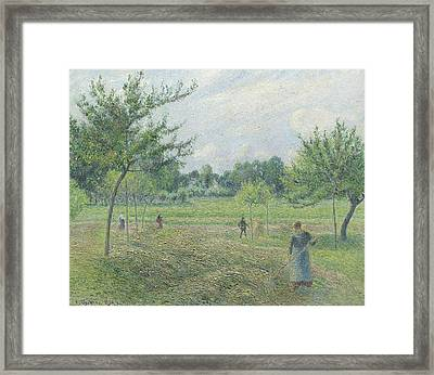 Haymaking At Eragny Framed Print by Camille Pissarro