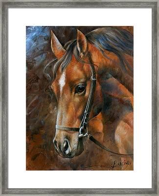 Head Horse Framed Print by Arthur Braginsky
