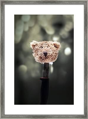 Head Of A Teddy Framed Print by Joana Kruse