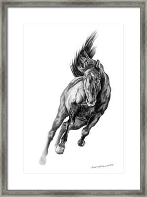 Head On Framed Print by Renee Forth-Fukumoto