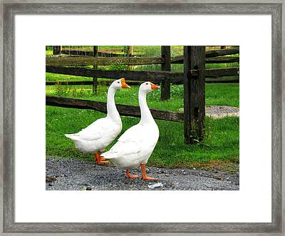Headin' Home Framed Print by Deborah  Crew-Johnson