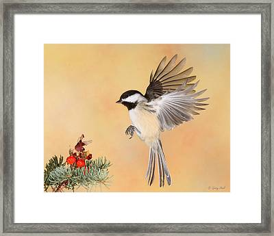 Heading For The Rose Hips Framed Print by Gerry Sibell