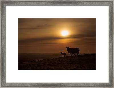 Heading Home Framed Print by Chris Fletcher